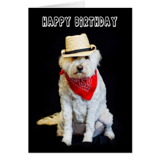 BIRTHDAY - HUMOR - DOG/COWBOY HAT AND SCARF CARD
