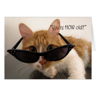 Birthday Humor - You're HOW Old? Cat Greeting Card