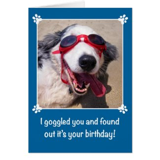 Birthday - I Goggled You - Australian Shepherd Dog Card