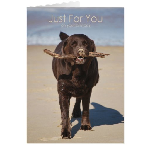 Birthday-Just For You Greeting Card