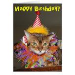 Birthday Kitty Clown