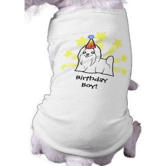 Birthday Maltese (show cut) Sleeveless Dog Shirt
