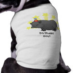 Birthday Miniature Pig