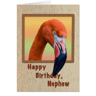 Birthday, Nephew, Flamingo Bird Greeting Card