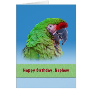 Birthday,  Nephew, Green Parrot Greeting Card