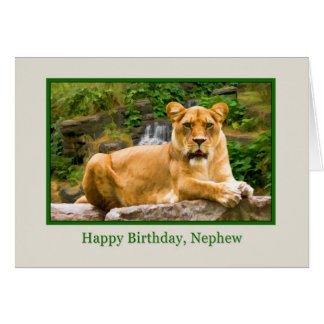 Birthday, Nephew, Lion on a Rock Greeting Card