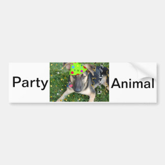 Birthday Party Animal German Shepherd Bumper Sticker