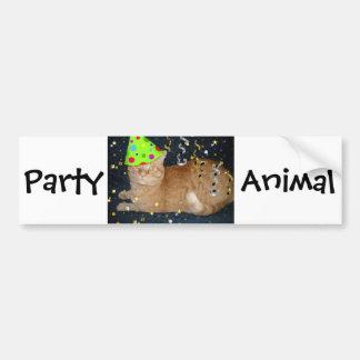 Birthday Party Orange Tabby Cat Bumper Sticker
