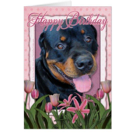 Birthday - Pink Tulips - Rottweiler - Harley