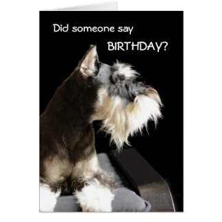 Birthday Schnauzer Greeting Card