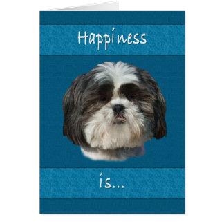 Birthday, Shih Tzu Dog Greeting Card