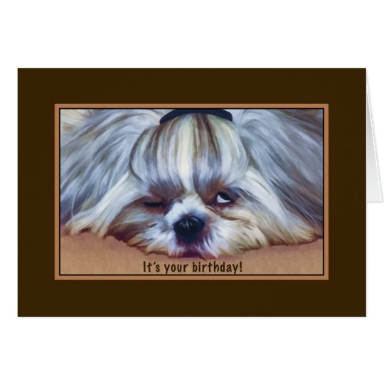 Birthday, , Sleepy Shih Tzu Dog Card