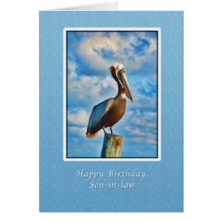 Birthday, Son-in-law,  Brown Pelican on Post Card