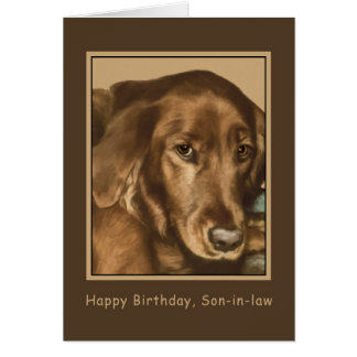 Birthday, Son-in-law, Golden Irish Dog Card