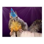 Birthday Squirrel Photo Postcard