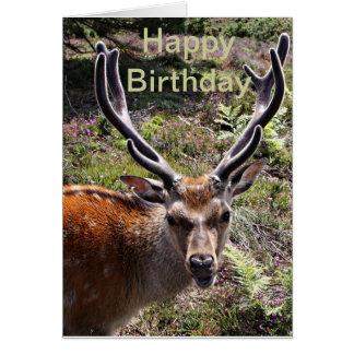 Birthday stag card