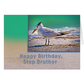Birthday, Step brother, Royal Tern Bird Greeting Card
