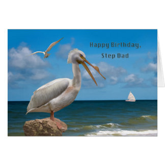 Birthday Step Dad White Pelican on a Rock Greeting Card