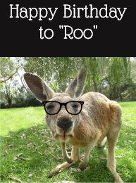 birthday_to_roo_fun_kangaroo_australia_a