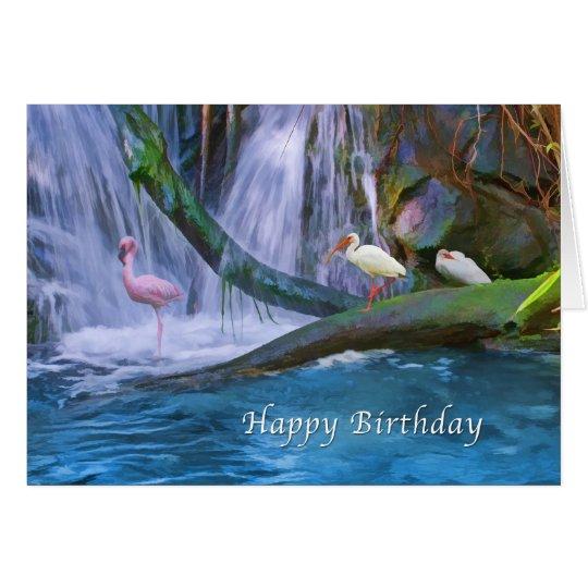 Birthday, Tropical Waterfall, Flamingos, Ibis Card