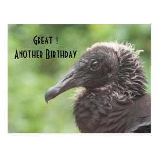 Birthday vulture postcard