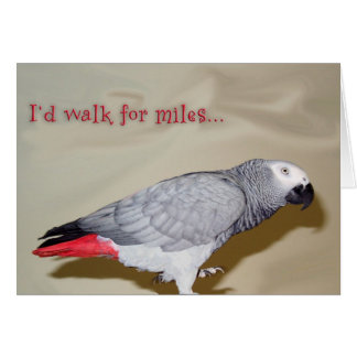 Birthday Walk For Miles Card