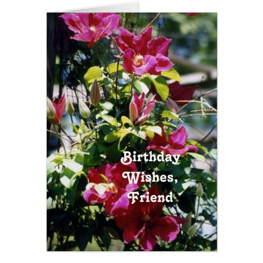 Birthday Wishes, Friend, pretty Clematis blooms . Card