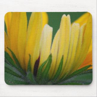 Birthday - Yellow Daisy Mouse Pad
