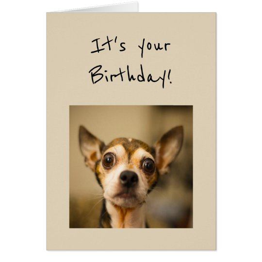 Birthday's are Scary Fun Chihuahua Dog Card