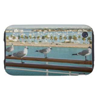 Biscayne Bay seen from cruise ship's deck iPhone 3 Tough Case