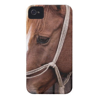 Biscuit Case-Mate iPhone 4 Case