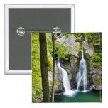 Bish Bash Falls in Bish Bash Falls State Park 15 Cm Square Badge