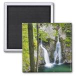 Bish Bash Falls in Bish Bash Falls State Park Square Magnet