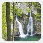 Bish Bash Falls in Bish Bash Falls State Park Square Sticker