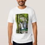 Bish Bash Falls in Bish Bash Falls State Park T Shirt