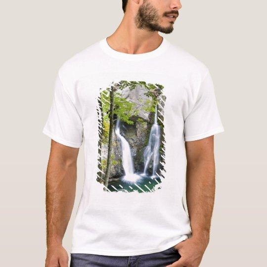 Bish Bash Falls in Bish Bash Falls State Park T-Shirt