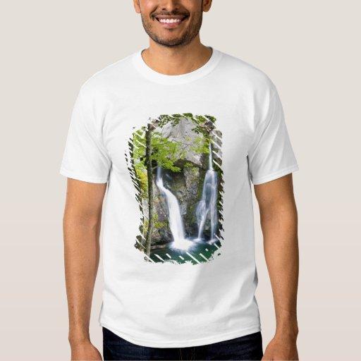 Bish Bash Falls in Bish Bash Falls State Park Tshirt