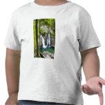 Bish Bash Falls in Bish Bash Falls State Park Tee Shirts