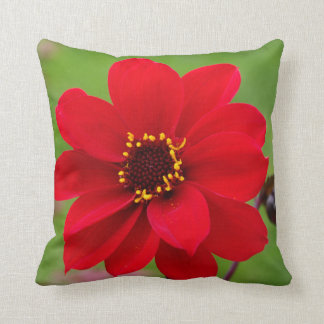 Bishop of Llandaff Dahlia Cushion