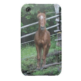 Bisley Case-Mate iPhone 3 Case