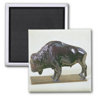 Bison, 1907 magnet