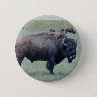 Bison 6 Cm Round Badge