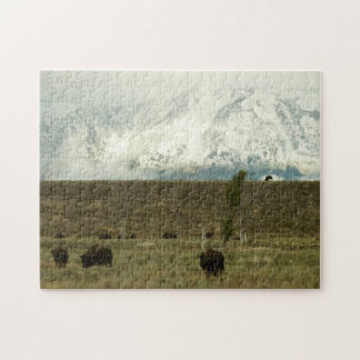 Bison at Grand Teton National Park Photography Jigsaw Puzzle
