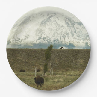Bison at Grand Teton National Park Photography Paper Plate