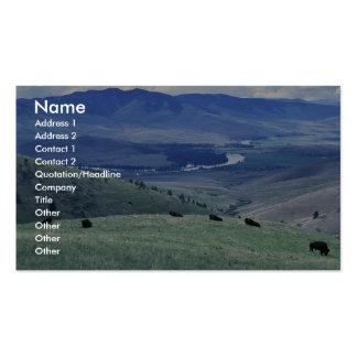 Bison at the National Bison Range Business Cards