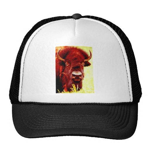 Bison / Buffalo Face Hats