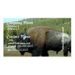 Bison Business Cards