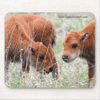 Bison Calves Mouse Pad
