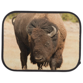 Bison Car Mat