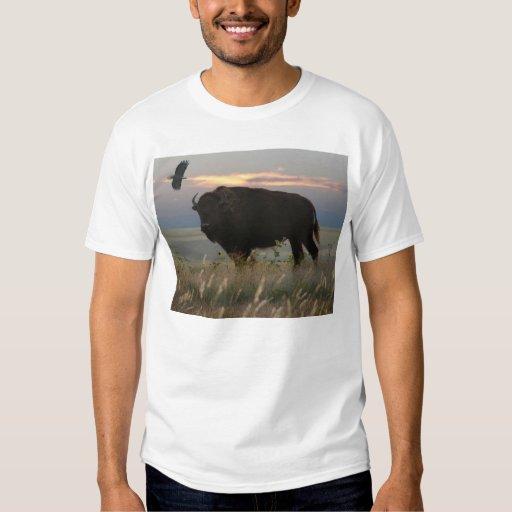 Bison & Eagle T-Shirt
